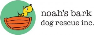 NB Logo